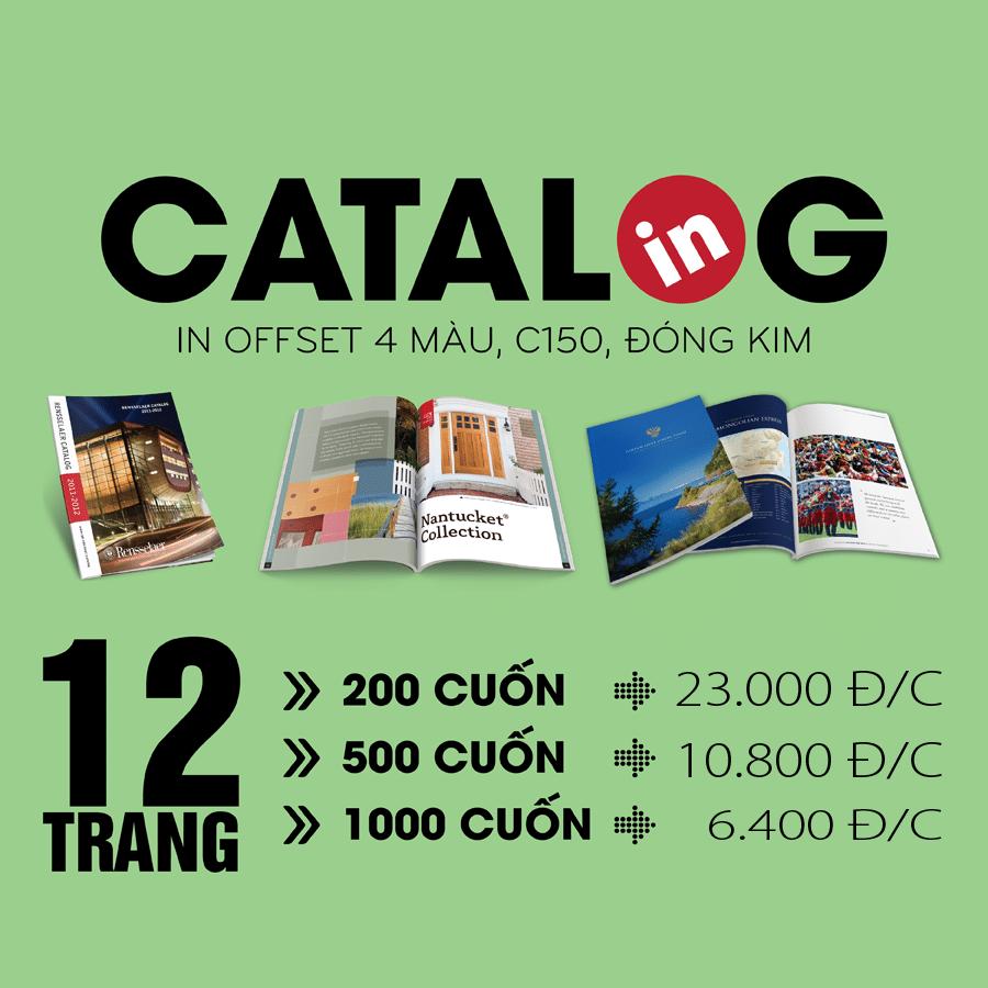 in ấn Catalogue giá rẻ
