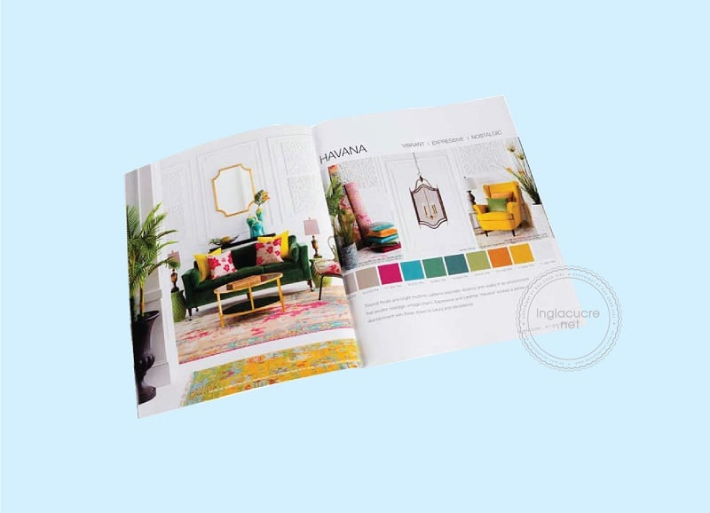 thiet-ke-catalogue-chuyen-nghiep